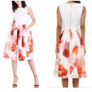 NWT Ted Baker Poppy Bow Pleat Skirt Dress Size 0
